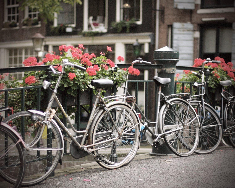 [:es]Montar en bici. Las bicicletas son para el verano. Día 3.#Yeswecaninsummer.  [:]